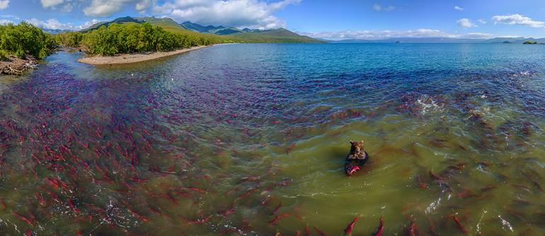 The Land of Bears, Kurile Lake, Kamchatka, Russia - AirPano.com • 360° Aerial Panoramas • 360° Virtual Tours Around the World