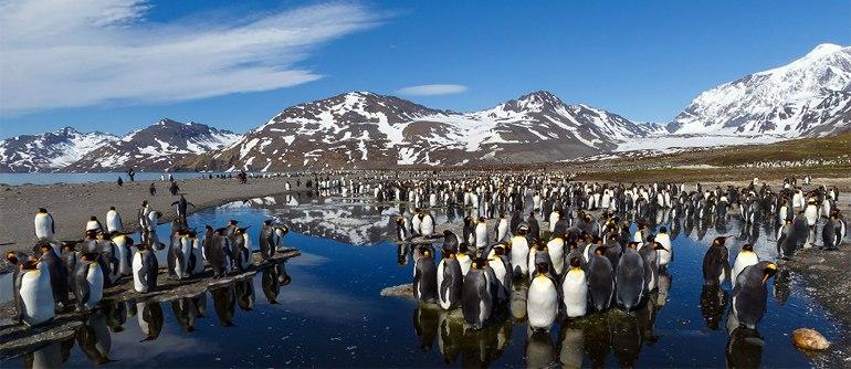 Antarctica, South Georgia Island - AirPano.com • 360° Aerial Panoramas • 360° Virtual Tours Around the World