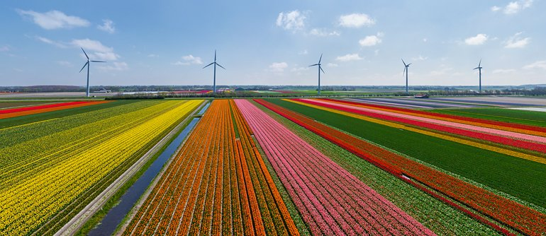 Holland. The country of tulips - AirPano.com • 360° Aerial Panoramas • 360° Virtual Tours Around the World